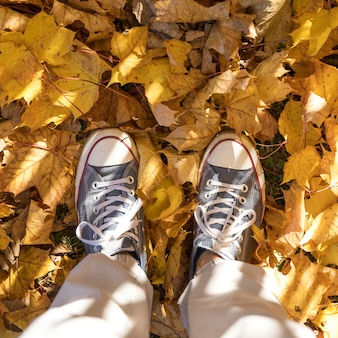 Close-uptennisschoenen op bladerenachtergrond