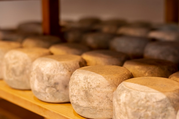 Close-upverscheidenheid van rijpe kaas