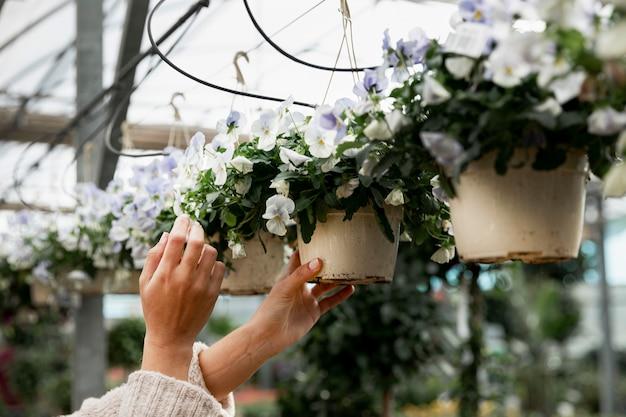 Close-upvrouw die bloempotten schikken