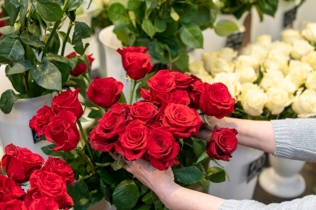 Close-upvrouw die elegante rode rozen houden