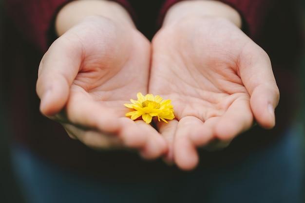Close-upvrouw die gele bloem in haar palm houden, aanmoedigingsconcept