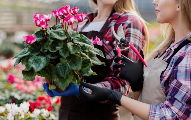 Close-upvrouwen die bloemenpot houden