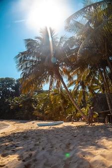 Cocalito-strand in punta de sal en een lokale boot onder een palmboom, tela. honduras