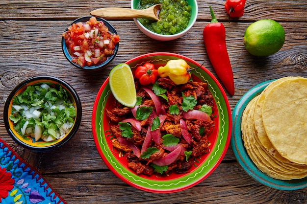 Cochinita pibil mexicaans platillo-voedsel met rode ui