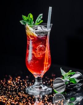 Cocktail met ijsblokjes van citroenplakken en munt