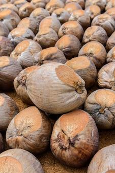 Coconut perfume snijdt het hoofd voor rassen