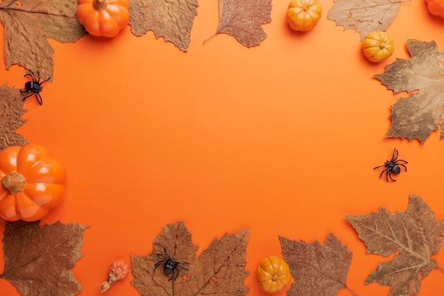 Collectie halloween en herfst partij objecten frame