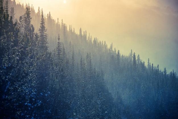 Colorado winter tijd
