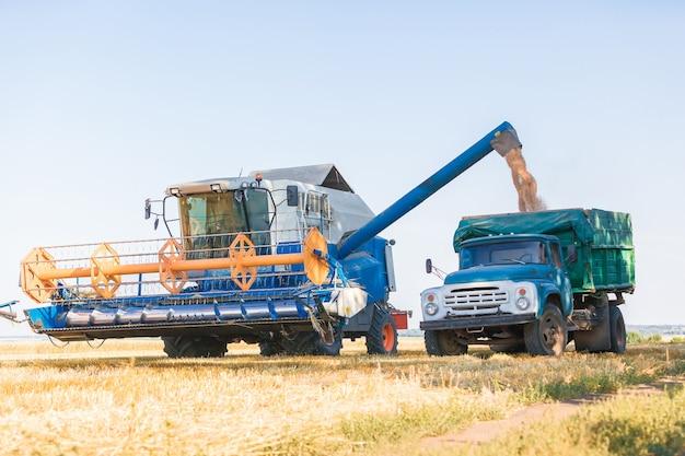 Combineer harvester bezig met zonnige zomerdag.
