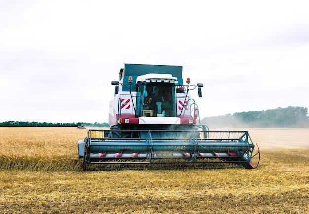 Combineren harvester oogst gouden tarwe. landbouw
