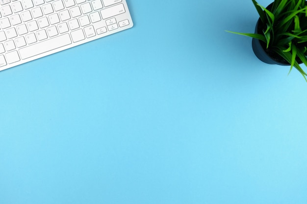 Compact wit draadloos toetsenbord op een blauwe achtergrond met een plant. kopieer ruimte.