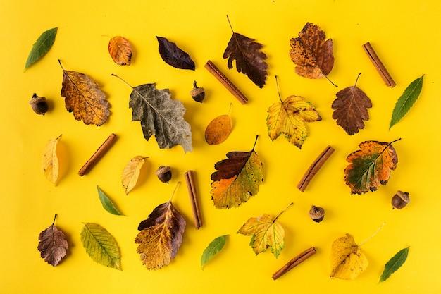 Componeerde bladeren op oranje achtergrond