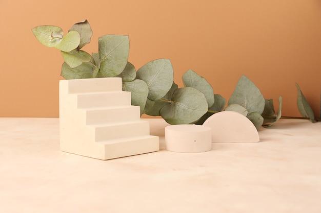 Compositie van de lege geometrische podia en eucalyptustak erachter
