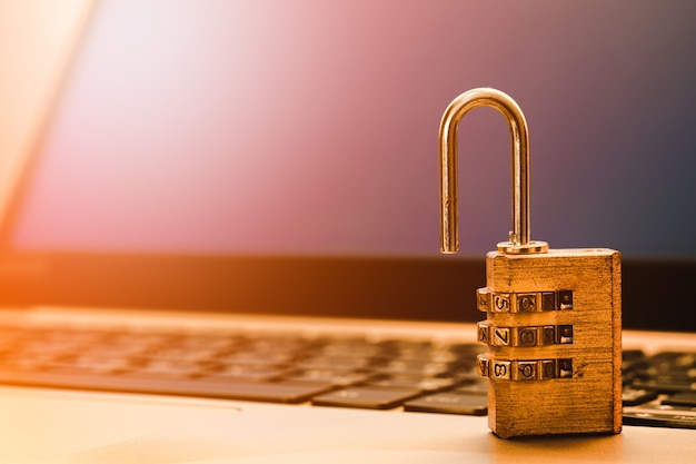 Computerinformatiebeveiliging en gegevensbeschermingsconcept