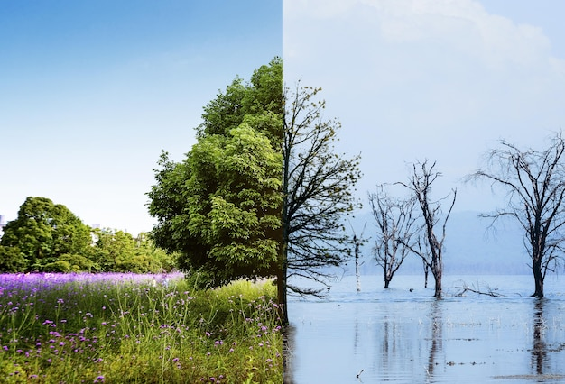 Concept collage van klimaatverandering