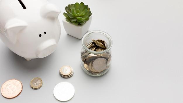 Concept economie met spaarvarken en succulente installatie