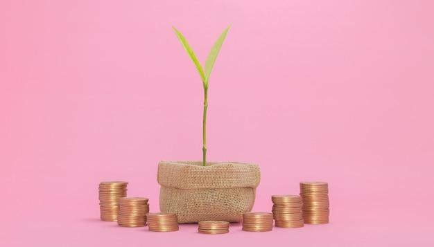 Concept financiële groei investeren aandelen betalen belastingen