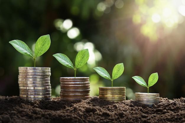 Concept idee groeien en geld besparen