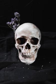 Concept met schedel en droge bloemen