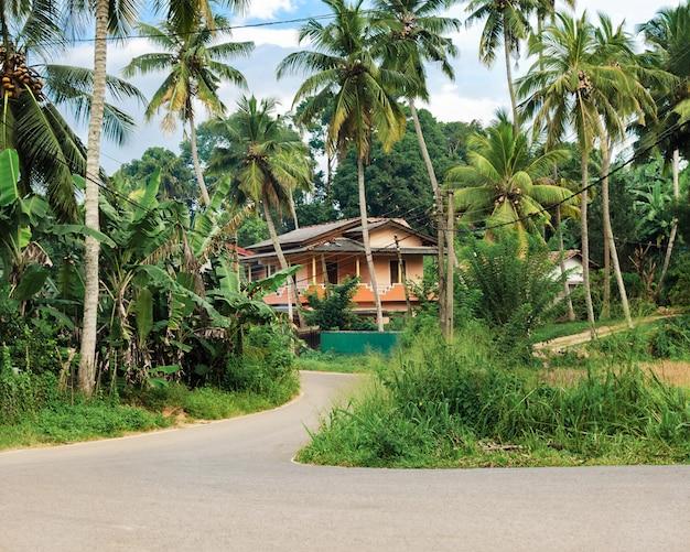 Concept privacy en rust op een rustige plek op het tropische eiland - weg die leidt naar groot huis, omgeven door kokospalmen en groene plant.