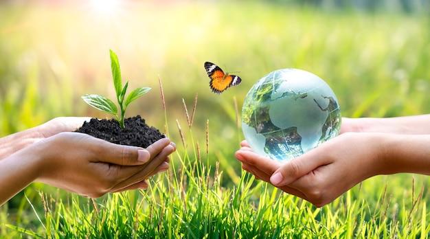 Concept red de wereld veilige omgeving. de wereld is in het gras