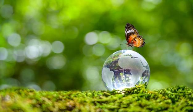 Concept save the world save environment de wereld ligt in het gras van de groene bokeh-achtergrond