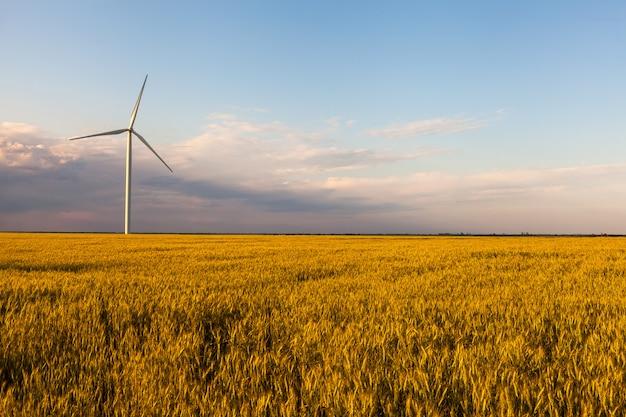 Concept van de de elektriciteitstechnologie van de turbine het groene energie