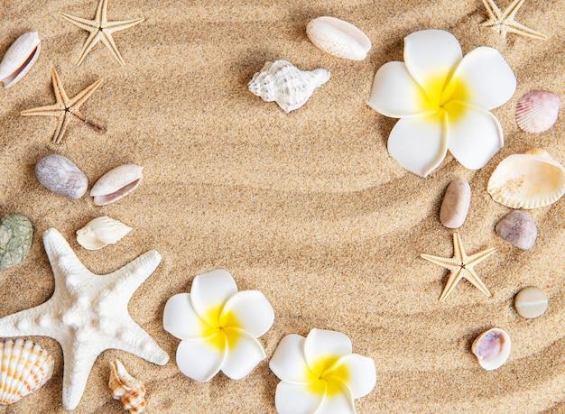 Concept van de zomerreis met visster en zeeschelpen op de zandachtergrond