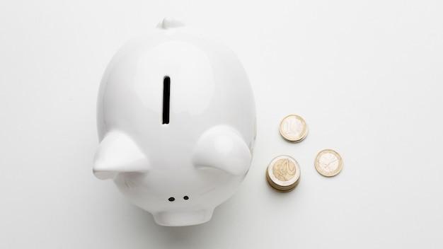 Concept van economie met spaarvarken plat lag