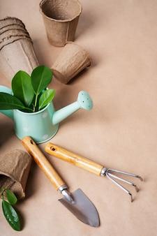 Concept van transplantatieplanten, herbeplantingsplanten, van pot tot tuin.