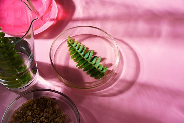 Conceptonderzoek van schoonheid en huidverzorging voedingssupplementen in het laboratorium