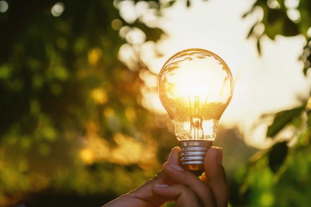 Conceptvermogensenergie van zonne-energie in de natuur