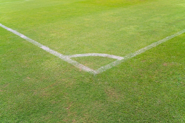 Conner van voetbalgebied met groen gras