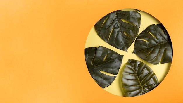 Copy-space cirkel met bladeren binnen