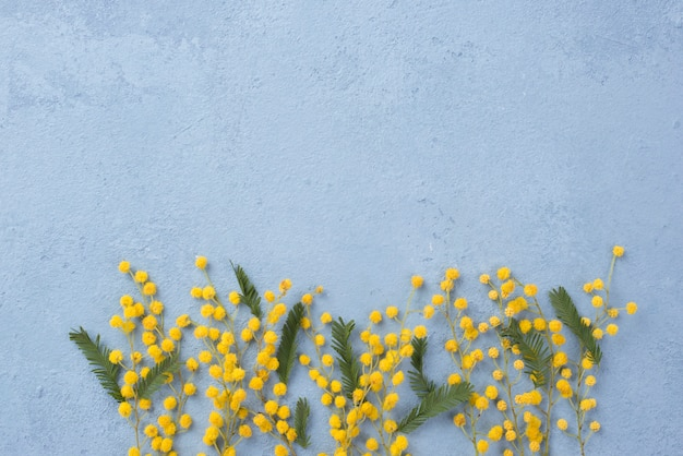 Copy-space lente bloemen takken