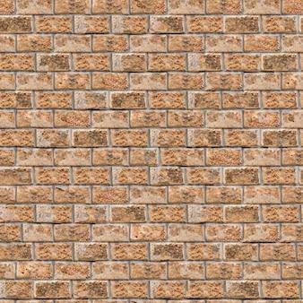 Coquina wall - klein formaat. naadloze tegelbaar textuur.