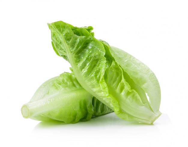 Cos lettuce geïsoleerd