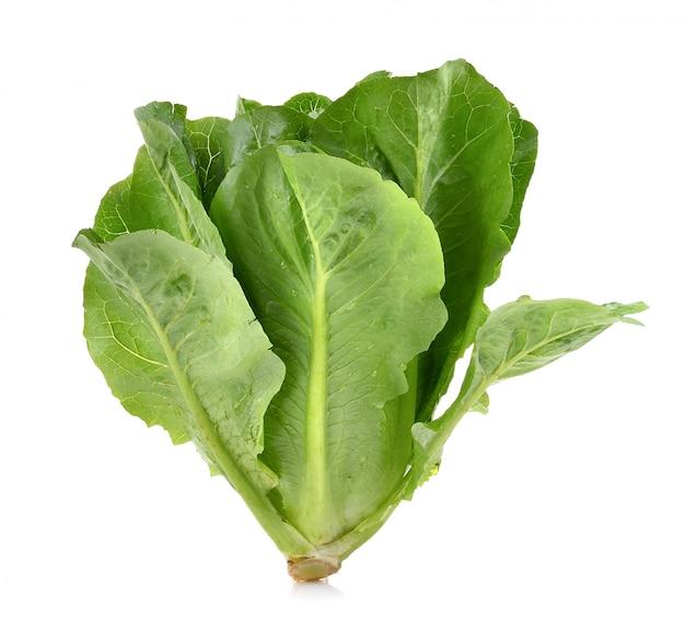 Cos lettuce op wit oppervlak