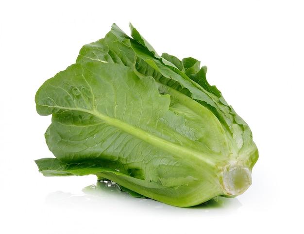 Cos lettuce op wit wordt geïsoleerd dat