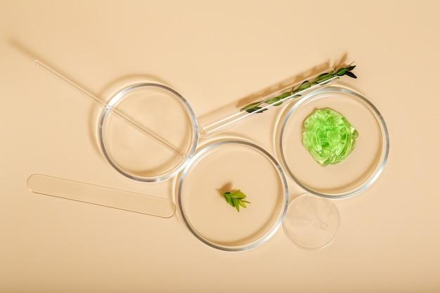 Cosmetische huidverzorgingsproducten in petrischalen op beige achtergrond. aloë gel natuurlijke cosmetica voor cosmetologie. medische kruideningrediënten in de reageerbuis van het laboratoriumglaswerk. bovenaanzicht.