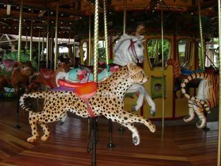 Cougar carrousel