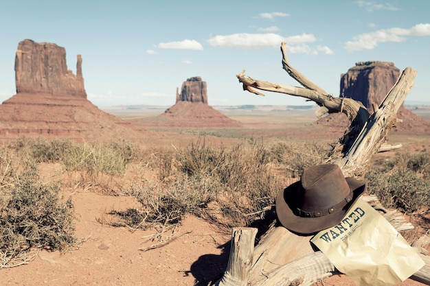 Cowboyhoed voor monument valley, vs.