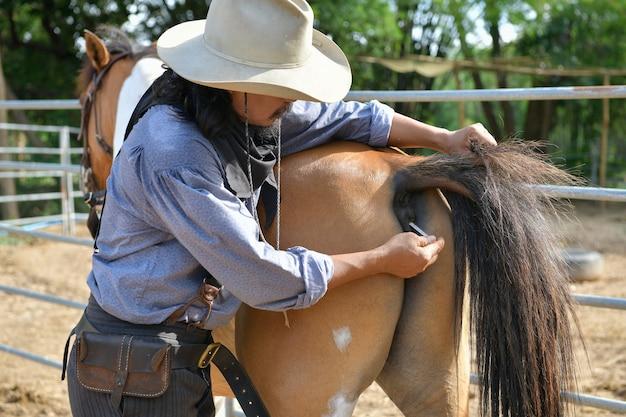 Cowboymannen meten koorts met kwik voor paarden. op zijn boerderij