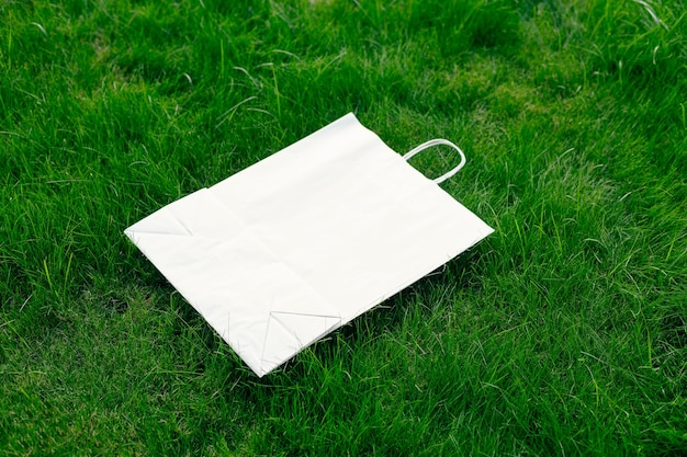 Creatief compositiekader voor lay-out gemaakt van groen gazongras met ambachtelijke papieren zak met handvatten, plat leggen en kopiëren van het logo.
