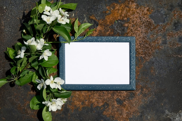 Creatief hoogste de brunchframe van de boom bloeiende bloemen van de meningsappel op rustieke houten achtergrond