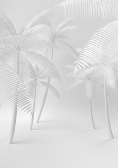 Creatief idee voor minimaal zomerpapier. concepten witte palm met witte achtergrond. 3d render, 3d illustratie.