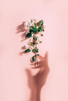 Creatief lenteconcept met tak van bloeiende appelboom en zonneschaduwen in de vorm van een vrouwenhand