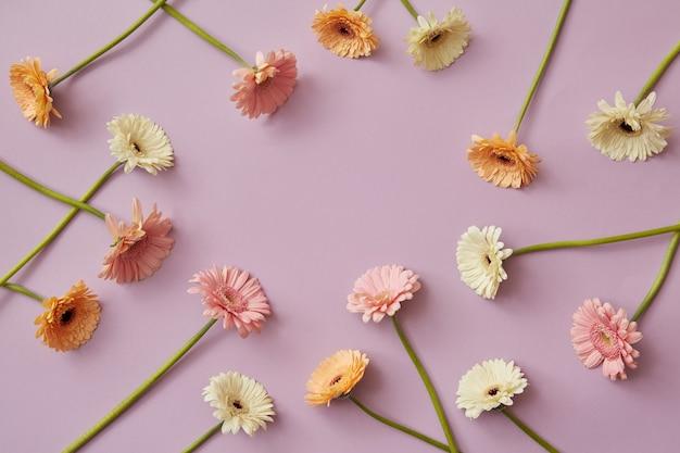 Creatief patroon van verschillende kleurrijke gerbera's op een roze papieren achtergrond. lente samenstelling. als ansichtkaart voor moederdag of 8 maart met kopieerruimte. plat leggen.