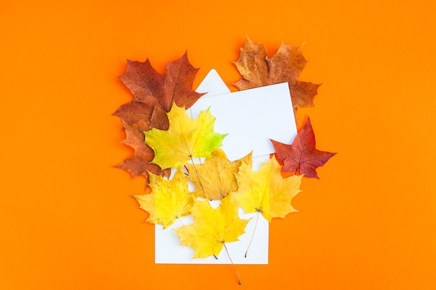 Creatieve bovenaanzicht plat lag herfst concept samenstelling. envelop gedroogde heldere herfstbladeren