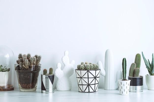 Creatieve compositie in scandinavische stijl planten houden van concept witte muren ruimte kopiëren sjabloon